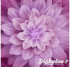 Hoffman Dream Big Digital Panel - Magenta (P4389-72)