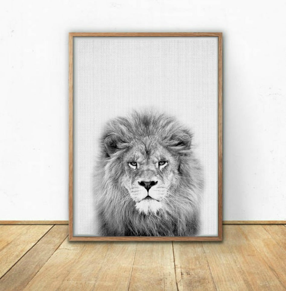 Black and white lion wall art print