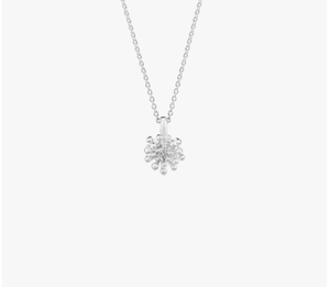 Blossom Necklace, Silver, NZ, Evolve,