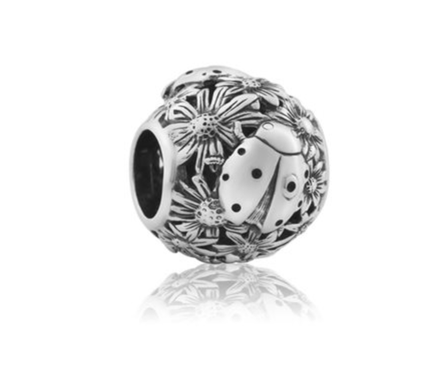 New Zealand Charm, Evolve, Ladybird, Luck, Sterling Silver, Designed in NZ,  local,