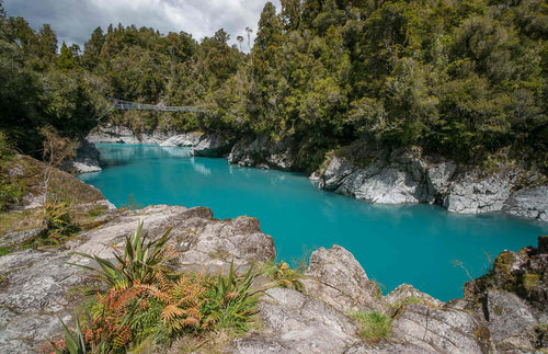 Hokitika Gorge with Bridge + Native Bush