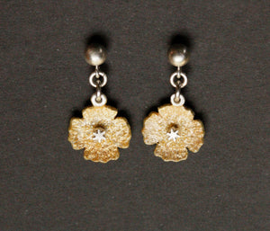 Apricot Iceland Poppy Earrings