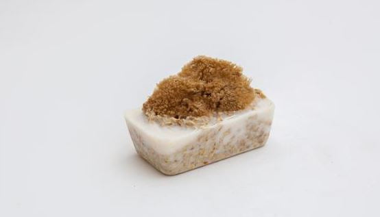 Natural Sea Sponge Soap