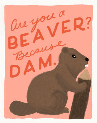 Beaver Dam - Slightly Stationery Greeting Card - Ottawa, Canada