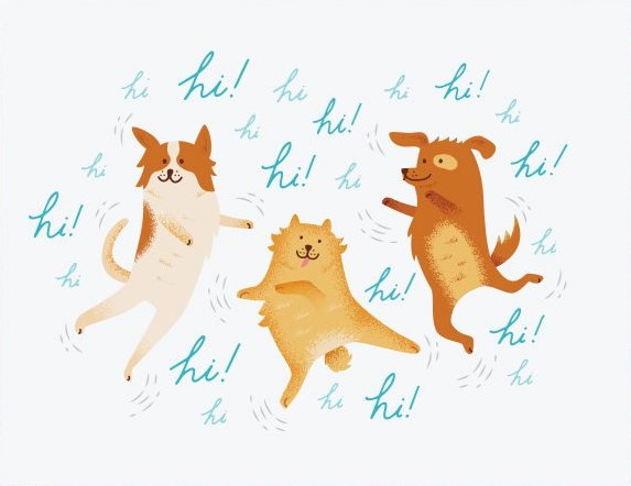 Excited Dogs - Quirky Paper Greeting Card - Ottawa, Canada