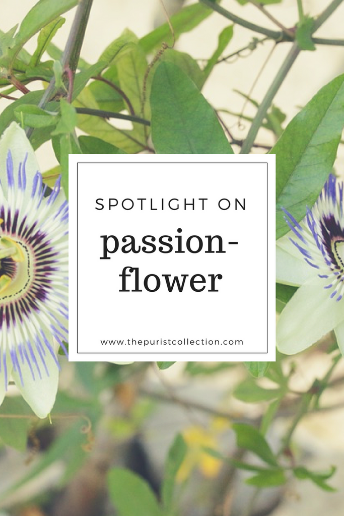 Spotlight on: Passionflower