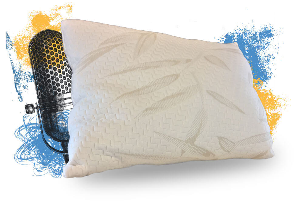 Free Bambook & Organic Cotton Pillows