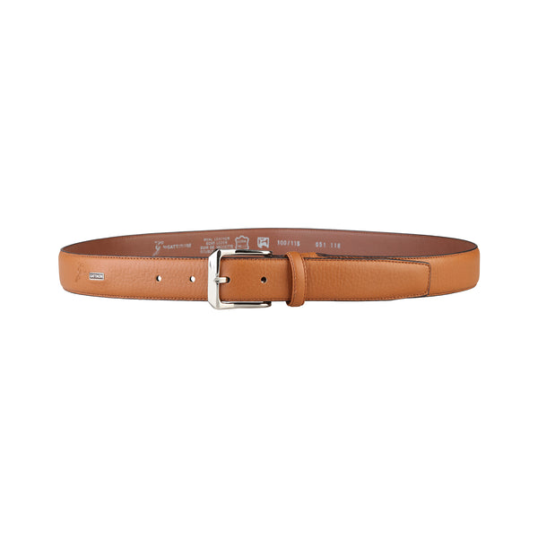 Gattinoni Brown Men Belts