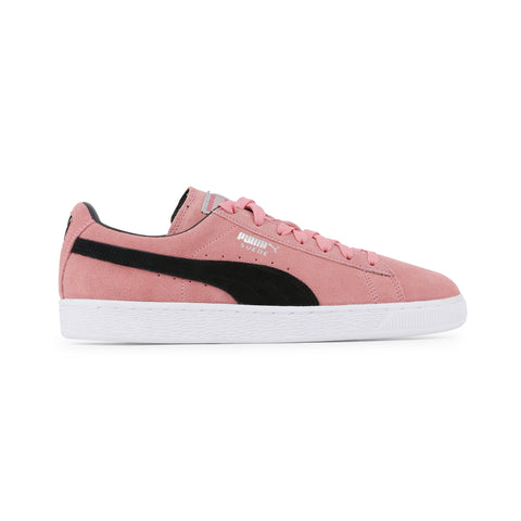 Puma pink,black Men Sneakers