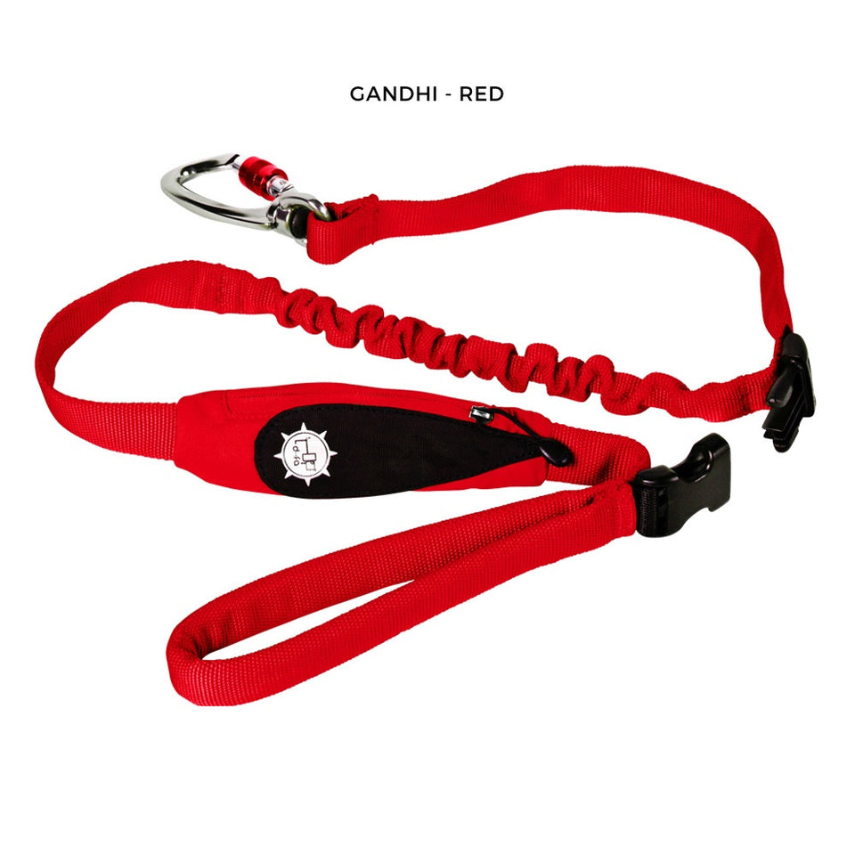 Gandhi Dog Leash - Walk In Peace