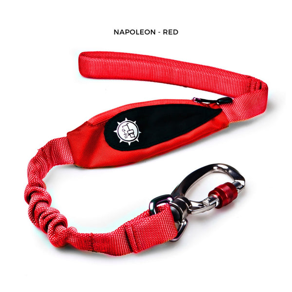 Napoleon - Short Leash - Grey
