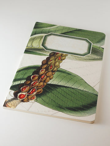 We Act Magnolia Seed Pod Botanical Notebook
