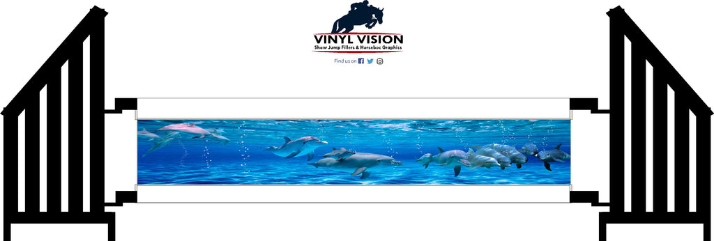 Dolphins - Vinyl Vision