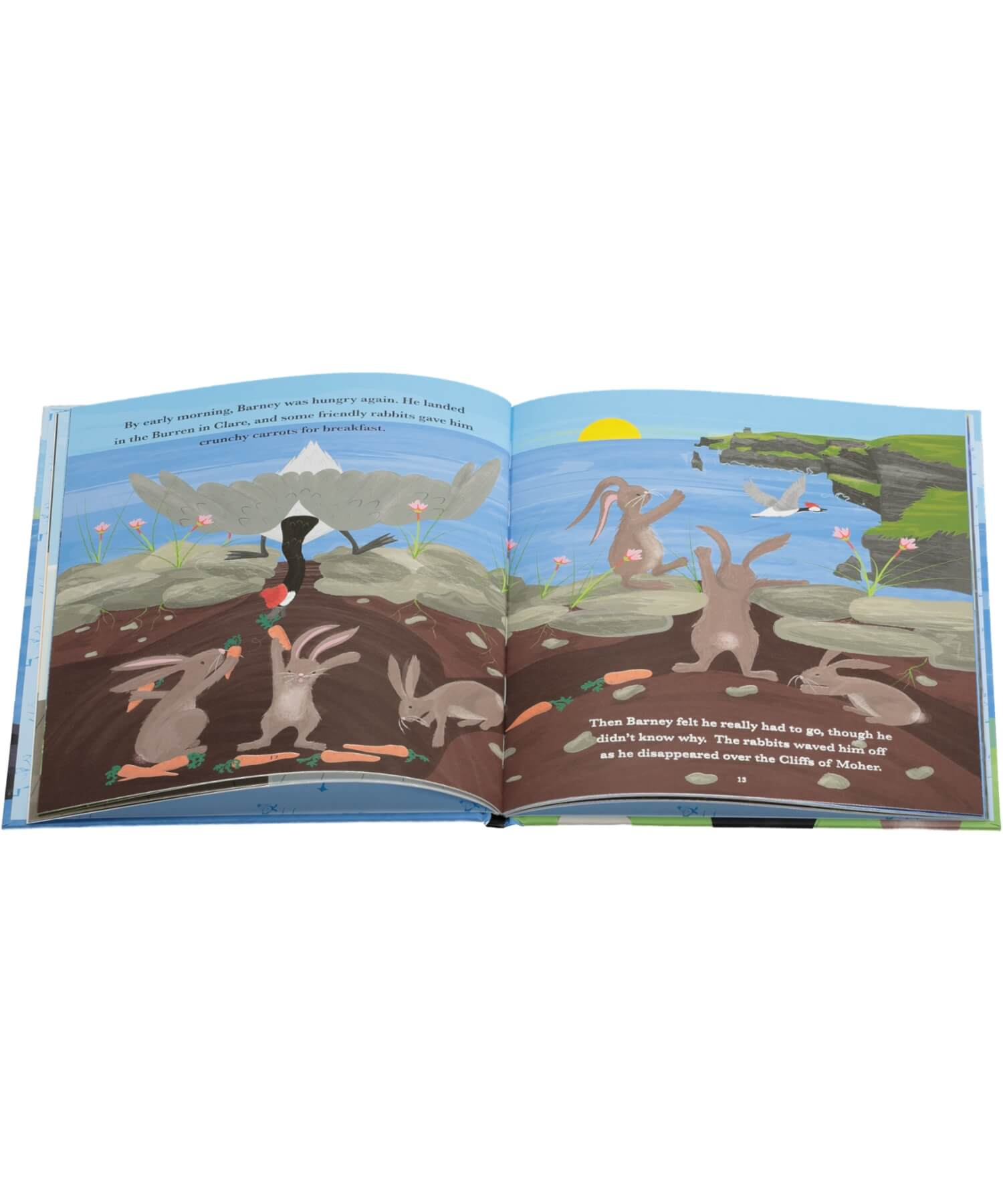 Barney Goose: A Wild Atlantic Way Adventure - [The O'Brien Press] - Books & Stationery - Irish Gifts