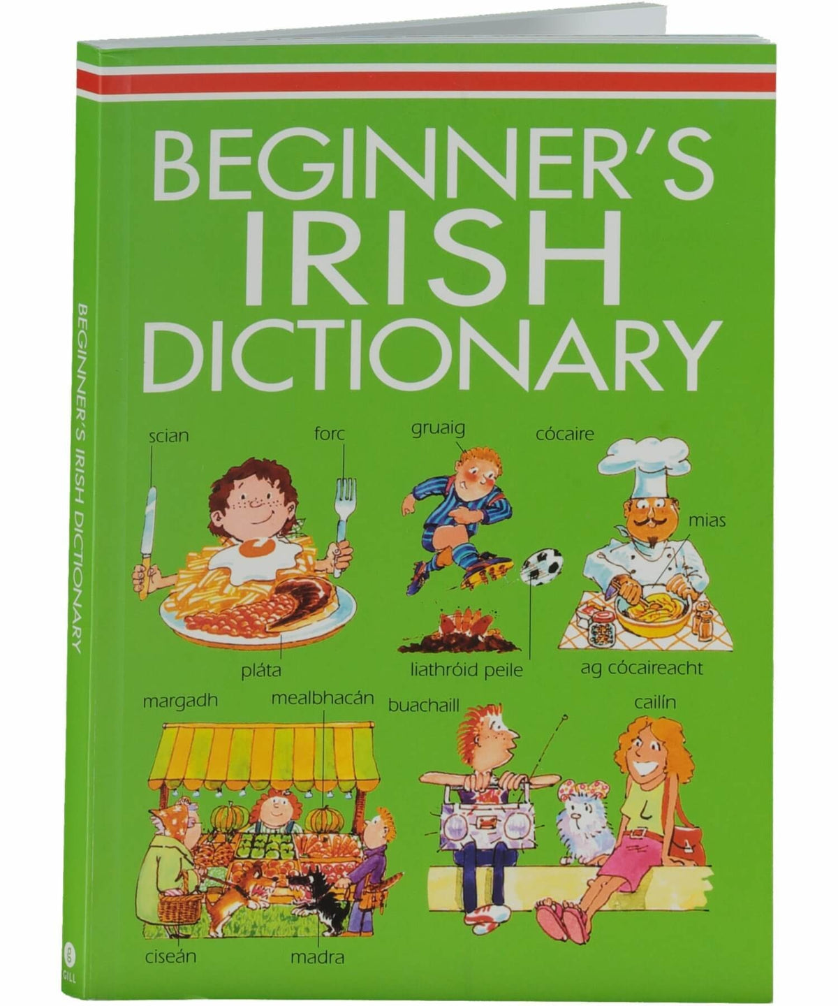 Beginners Irish Dictionary Gill & MacMillan Books