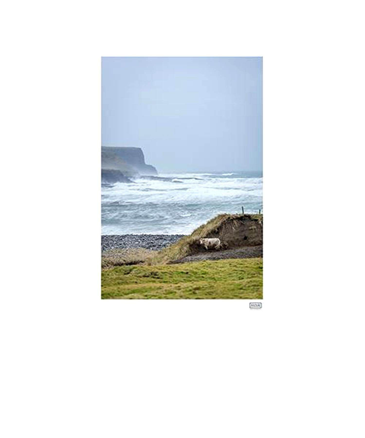 Finding Shelter, Doolin - [Siar Photography] - Wall Art & Photography - Irish Gifts