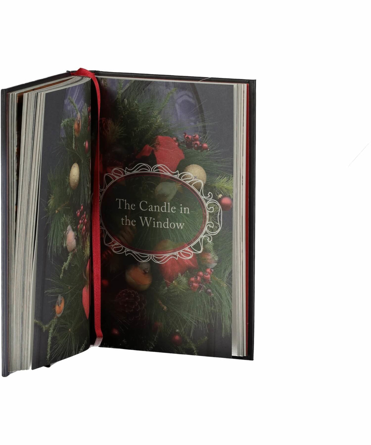 Home For Christmas - [The O'Brien Press] - Books & Stationery - Irish Gifts