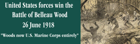 Devil Dog's Control Belleau Wood