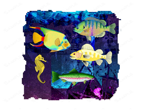Fish Wall Art Print Fish Home Decor Wall Art 8 x 10 Print