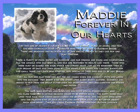 PERSONALIZED Pet Memorial Rainbow Bridge for Your Pet Dog Cat or any Pet 8 X 10 Print