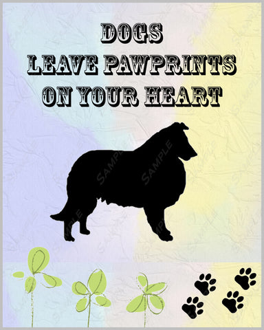 Collie Dog Collie Art 8 X 10 Print Collie Pet Gifts