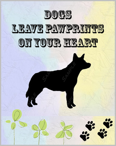 Australian Cattle Dog 8 X 10 Print. Australian Cattle Dog Pet Gifts