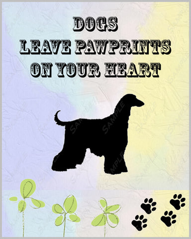 Afghan Hound Dog 8 X 10 Print. Afghan Hound Art Pet Gifts