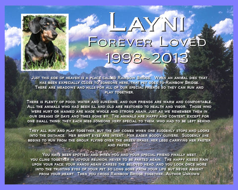 PERSONALIZED Pet Memorial for Pet Dog Cat Memorial 8 X 10 Print Memorial Rainbow Bridge Poem