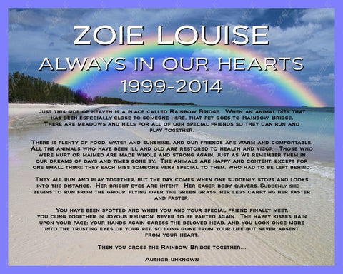 Personalized Memorial for Pet Dog or Cat Rainbow Bridge Poem Memorials 8 X 10 Print
