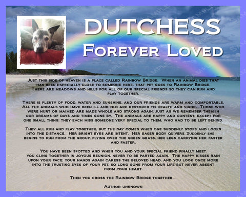 Pet Memorial PERSONALIZED for Pet Dog Cat 8 X 10 Print Rainbow Bridge Poem