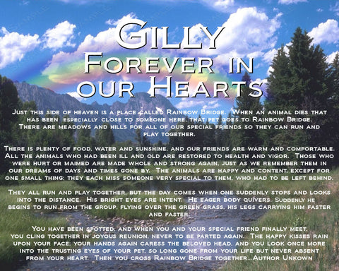 Pet Memorials - Pet Memorial 8 x 10 Print - Cat Dog Memorial Rainbow Bridge Poem