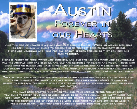 PERSONALIZED Pet Memorial Rainbow Bridge Poem Pet Memorial Pet Dog Cat 8 X 10 Print
