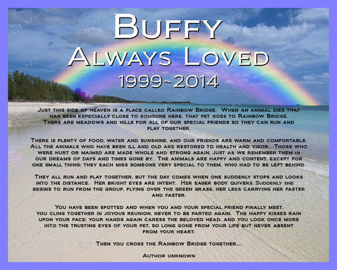 Personalized Pet Memorial  8 X 10 Print - Pet Memorial for Dog Cat or Any Pet Rainbow Bridge Poem