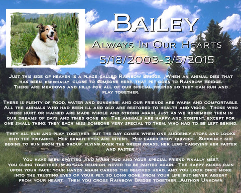 PERSONALIZED Pet Memorial With a Picture of Your Pet 8 X 10 Print Pet Memorial Rainbow Bridge Poem