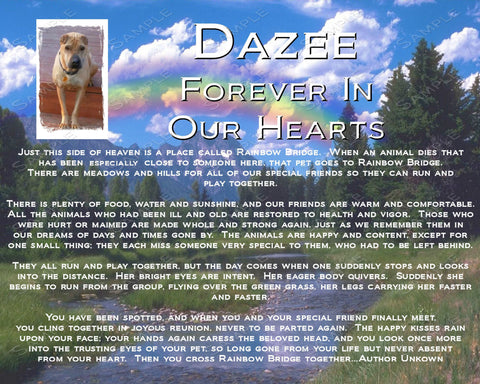 Pet Memorials. Pet Dog, Cat Memorial. Rainbow Bridge Poem Pet Memorial 8 X 10 Print