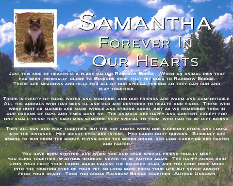 CUSTOM Cat Pet Memorial Rainbow Bridge Poem Pet Memorial Pet Cat Memorial 8 X 10 Print
