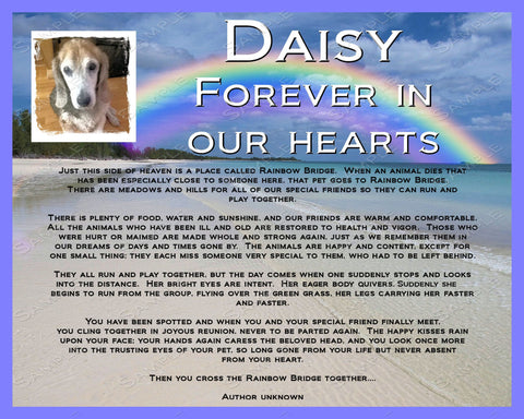 Personalized Dog Pet Memorial Rainbow Bridge Poem Pet Memorial Pet Dog Memorial 8 X 10 Print