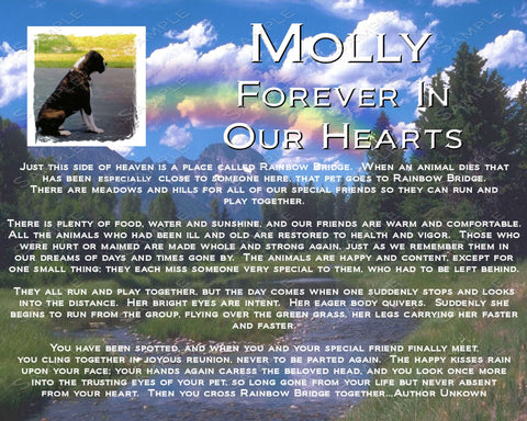 PERSONALIZED Pet Memorial Rainbow Bridge Pet Memorial 8 X 10 Print - Pefect Pet Memorial Keepsake