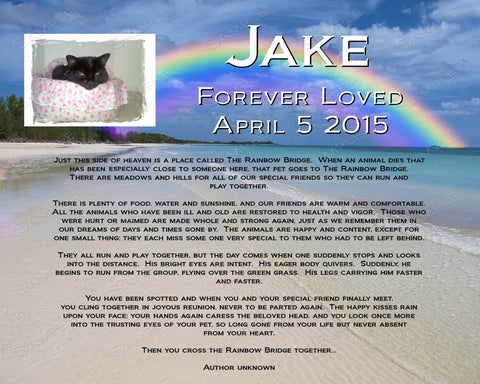 PERSONALIZED Pet Memorial for Pet Dog Cat 8 X 10 Print Rainbow Bridge Memorial Poem