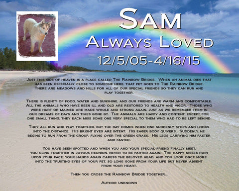 PERSONALIZED Pet Memorial Rainbow Bridge Poem Pet Memorial Pet Dog Cat 8 X 10 Pet Memorial Print