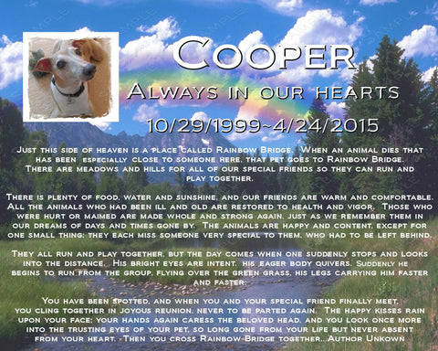 PERSONALIZED Pet Memorial Print Rainbow Bridge Poem Pet Memorial Pet Dog Cat 8 X 10 Print