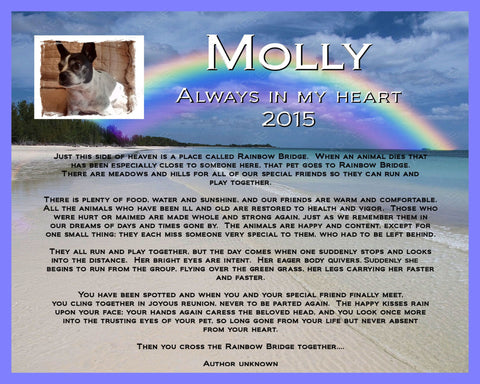 Pet Memorial Print - Rainbow Bridge Pet Memorial for Your Pet Dog Cat or any Pet 8 X 10 Print