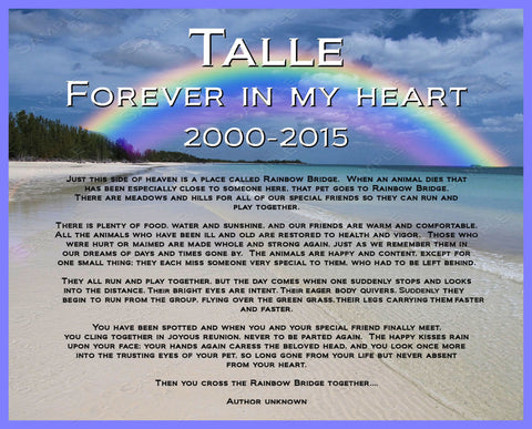 Personalized Pet Memorial  Rainbow Bridge 8 X 10 Print - Pet Memorial for Dog Cat or Any Pet