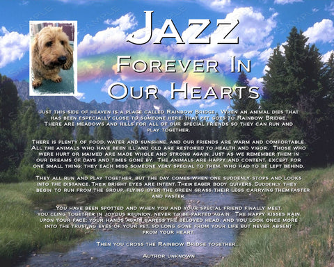 Pet Memorial Rainbow Bridge Pet Memorial for Your Pet Dog Cat or any Pet 8 X 10 Print
