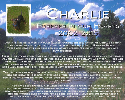 PERSONALIZED Pet Memorial With a Picture of Your Pet 8 X 10 Print Pet Memorial Rainbow Bridge Poem Custom Pet Memorial