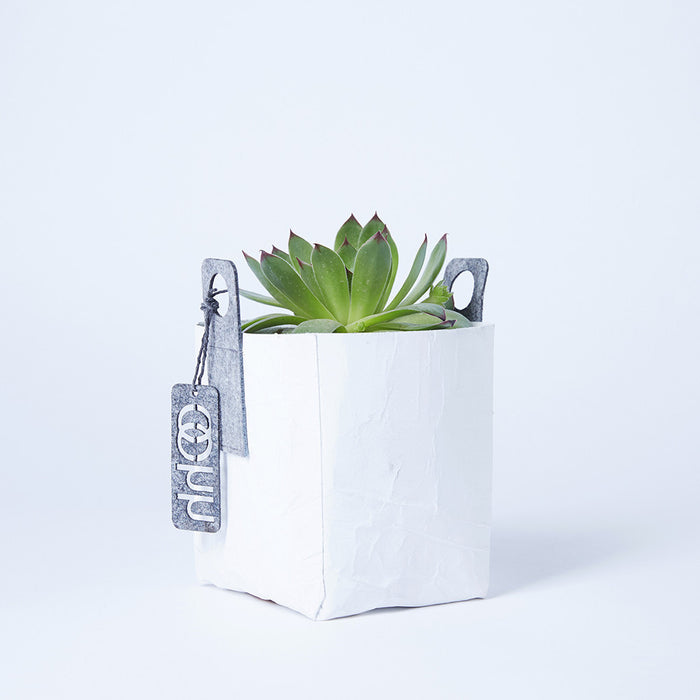 Recycled Plant Bag, Storage Bag | Remade By Shop