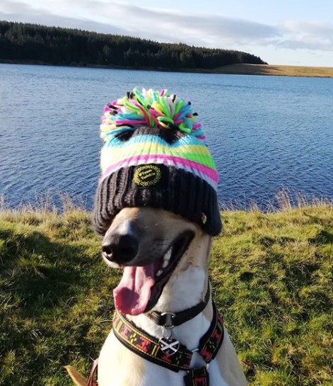 This Week in Pictures 129 | Big Bobble Hats