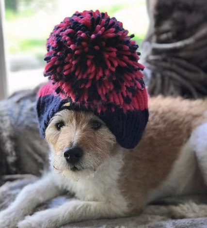 This Week in Pictures 147 | Big Bobble Hats