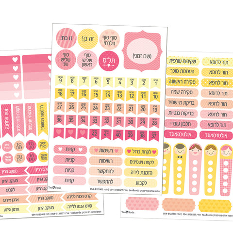 Planner stickers set - pregnancy