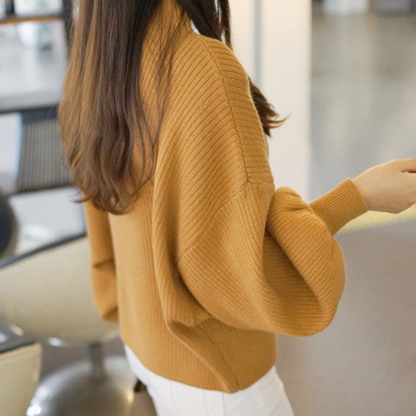 Full sleeve sweater